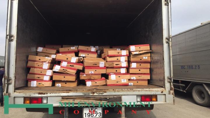 tiêu hủy 177 container thịt bò, nhựa phế liệu, hoa quả, chân gà buộc tiêu hủy do yêu cầu của bên hải quan, c49 và sở tài nguyên & môi trường